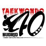 TWD Budrio 2016
