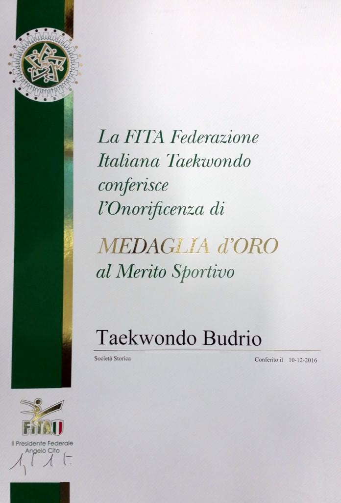 MedOroTkdBudrio-small
